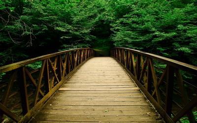 Одностраничник и многостраничник: строим мостик