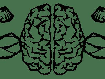 Как прокачать мозг