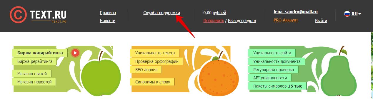 служба поддержки text.ru