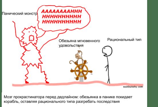 мозг прокрастинатора
